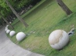 Deze bollen vind je werkelijk overal ter wereld